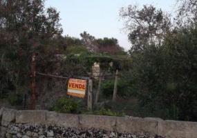 nela foto vediamo un terreno con costruzione antica dove edificare una villetta in salento