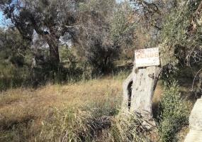 Terreni Agricoli, In vendita, ID Elenco 1131, Presicce, Presicce,