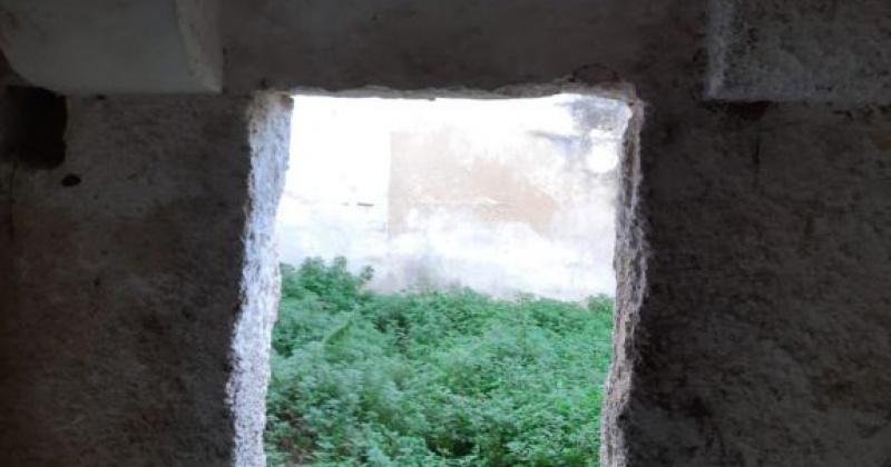 nella foto vediamo una porta che comunica con lo spazio retrostante di una casa in morciano di leuca